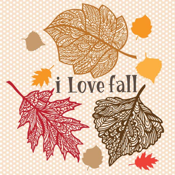 I love fall with intricate leaves