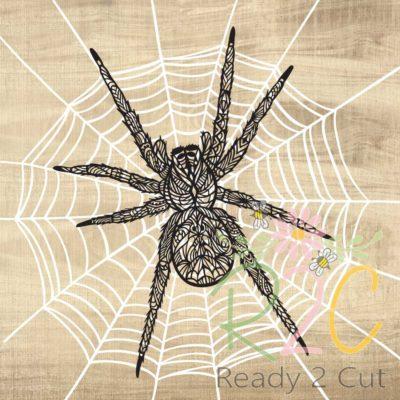 Spider ZEn