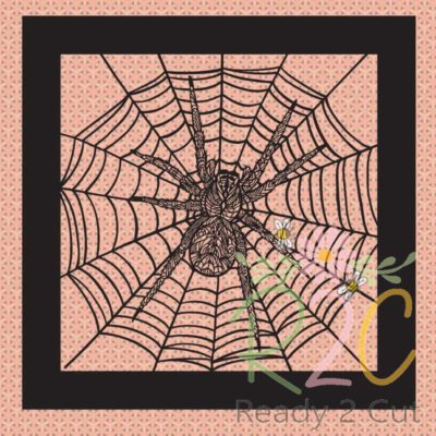 Spider and web in frame