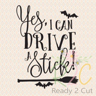 Yes, I can Drive a Stick